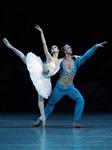 大剧院舞蹈节:马林斯基剧院芭蕾舞团《舞姬》的图片